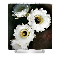 White Torch Blooms Shower Curtain