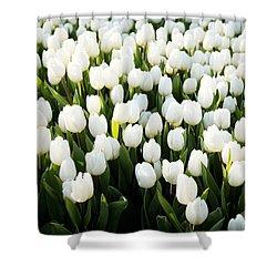 White Tulips In The Garden Shower Curtain