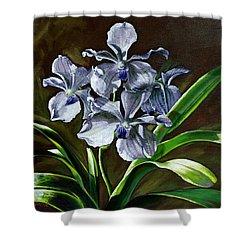 Morning Vanda Shower Curtain