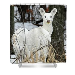White Visitor Shower Curtain by Brook Burling