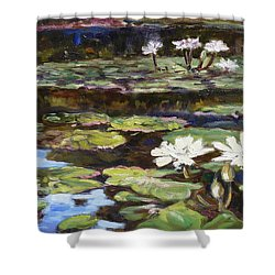 White Waterlilies In Tower Grove Park Shower Curtain