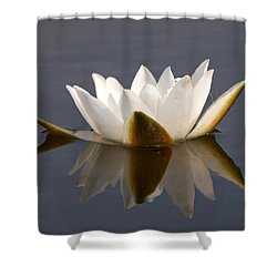 Shower Curtain featuring the photograph White Waterlily 2 by Jouko Lehto