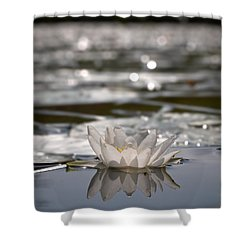 Shower Curtain featuring the photograph White Waterlily 3 by Jouko Lehto