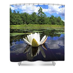 White Waterlily On A Lake Shower Curtain