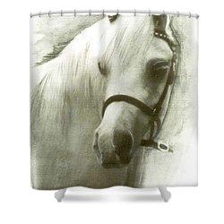 White Welsh Pony Shower Curtain