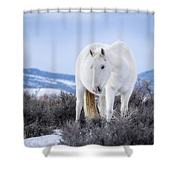 White Wild Horse Mystic Of Sand Wash Basin Shower Curtain