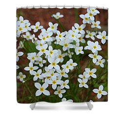 Shower Curtain featuring the digital art White Wildflowers by Barbara S Nickerson