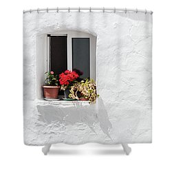 White Window Shower Curtain