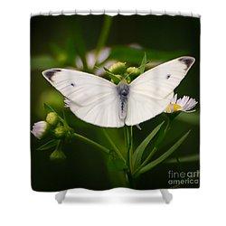 White Wings Of Wonder Shower Curtain by Kerri Farley