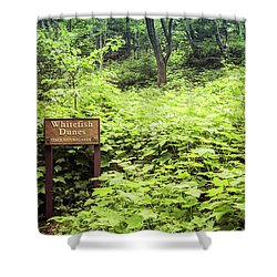 Shower Curtain featuring the photograph Whitefish Dunes Entrance by Joel Witmeyer