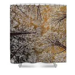 Shower Curtain featuring the photograph Whiteout by Tony Beck