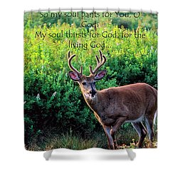 Shower Curtain featuring the photograph Whitetail Deer Panting by Thomas R Fletcher