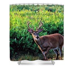Whitetail Deer Panting Shower Curtain