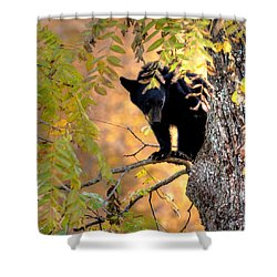 Who Are You Looking At Shower Curtain