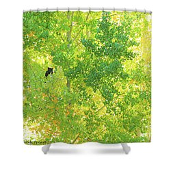 Who Who  Shower Curtain