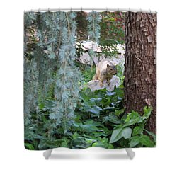 Shower Curtain featuring the photograph Whoa Nellie by Marie Neder