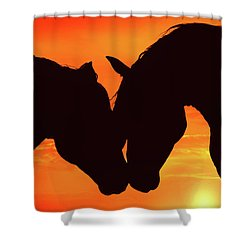 Wholeheartedly Shower Curtain