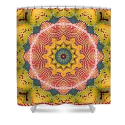 Wholeness Shower Curtain by Bell And Todd