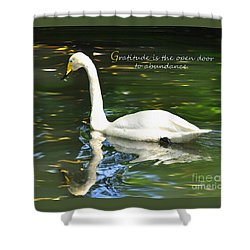 Whooper Swan Gratitude Shower Curtain