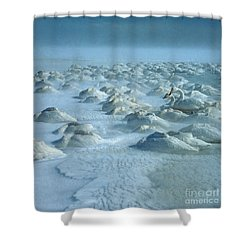 Whooper Swans In Snow Shower Curtain