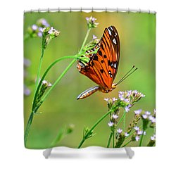 Shower Curtain featuring the photograph Whoops by Kathy Gibbons