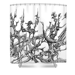 Whooshh Shower Curtain by Charles Cater