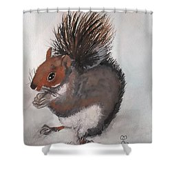 Who's Had Me Nuts Shower Curtain