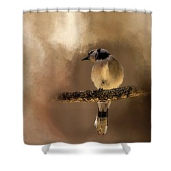 Who's There? Shower Curtain by Cyndy Doty