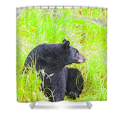 Who's There Shower Curtain
