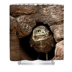 Who's There Shower Curtain by Phyllis Denton