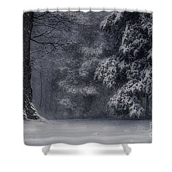 Whose Woods These Are I Think I Know Shower Curtain by William Fields