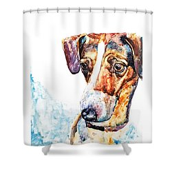 Why The Long Face? Shower Curtain