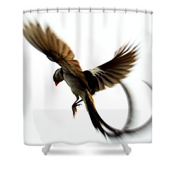 Whydah Abstract II Shower Curtain