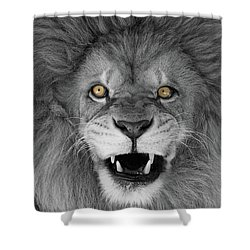 Wicked Black And White  T O C Shower Curtain by Judy Whitton