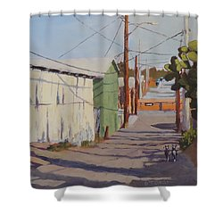 Wickenburg Alley Cats Shower Curtain