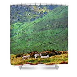 Shower Curtain featuring the photograph Wicklow Pastoral by Jenny Rainbow