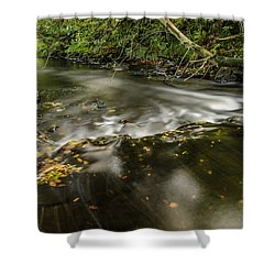 Wicklow Stream Shower Curtain by Martina Fagan
