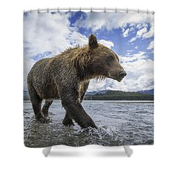 Wide Angle View Of Coastal Brown Bear Shower Curtain by Paul Souders