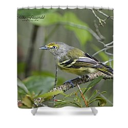 Wide Eyed And White Eyed Shower Curtain