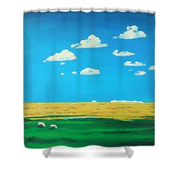 Wide Open Spaces And A Big Blue Sky Shower Curtain