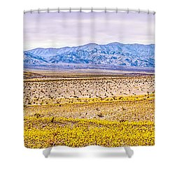 Wide Open Wonder Shower Curtain