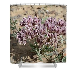 Widewing Spring Parsley Shower Curtain