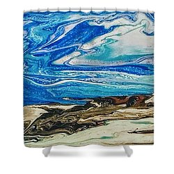 Wiinter At The Beach Shower Curtain