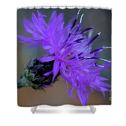 Wild And Beautiful 32 Shower Curtain