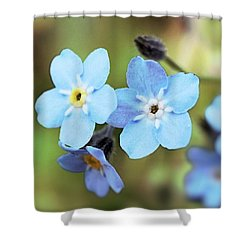 wild and Beautiful 4 Shower Curtain