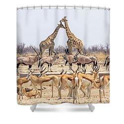 Wild Animals Pyramid Shower Curtain