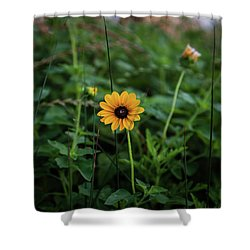 Wild At Hearts And Flowers Shower Curtain