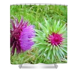 Shower Curtain featuring the photograph Wild Beauty In The Meadow by Jeanette Oberholtzer