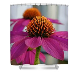 Wild Berry Coneflower Shower Curtain