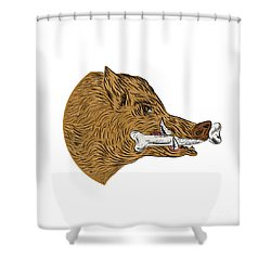 Elegant Wild Boar Razorback Bone In Mouth Drawing Shower Curtain